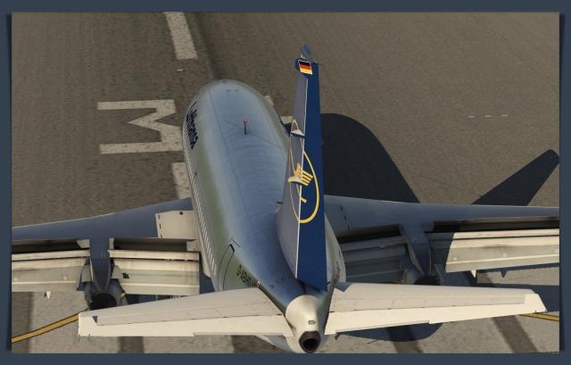 732 wings 4