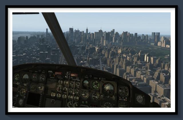 DD NYC 1
