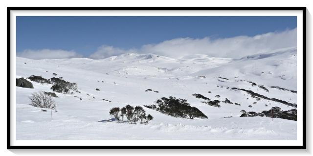 YCOM ski 2